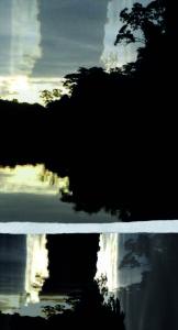 Fotografie, Kunst, Digitale Collage, Alphen aan den Rijn, Desiree Ubink, Bewerkte foto's. Schilderen met foto's, Digitale Kunst, Te Koop, Te Huur, Foto's, Fotocollages, Analoge collages, Natuurfotografie, Abstracte fotografie, Mysterieuze foto's, kunstacademie Breda