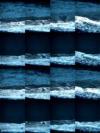 2012-06-26_zininzonzandenzee_DSCN3372