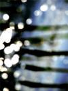 2012-06-29_DROOMBEELD_